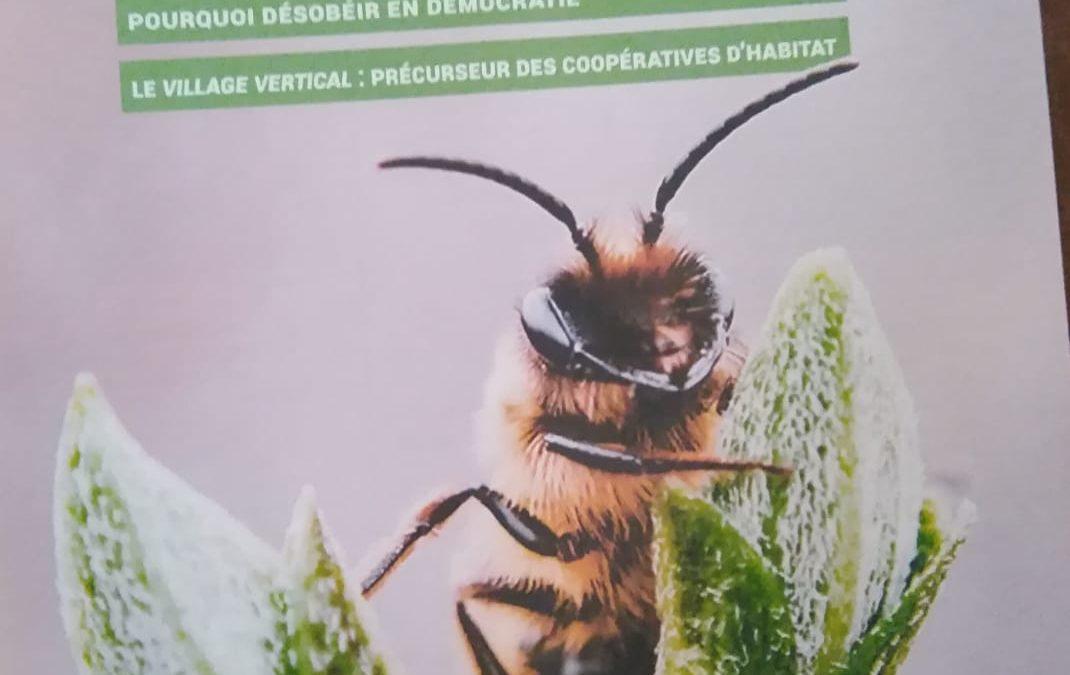 Consigli per una apicoltura naturale